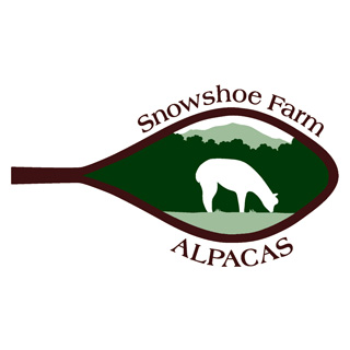Introducing Snowshoe Ammonoosuc!