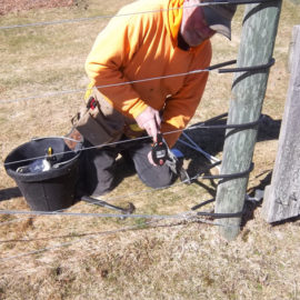 Spring!  Time for fence maintenance