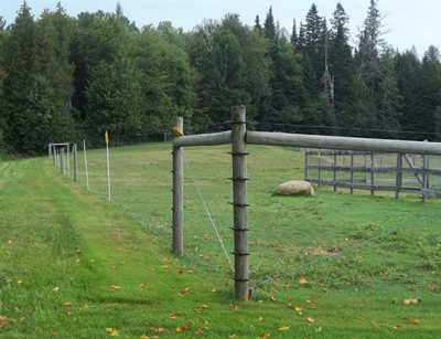 livestock fencing from snowshoe farm alpacas, peacham, vt