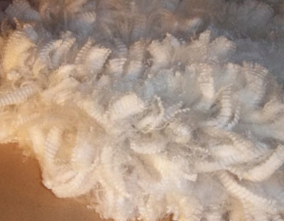 alpaca fiber from Snowshoe Farm, Peacham, VT