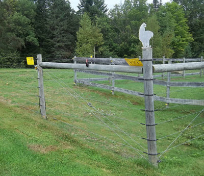 High tensile wire fence installed by Snowshoe Farm, Peacham, VT