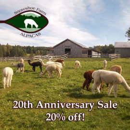 20th anniversary sale - Snowshoe Farm Alpacas